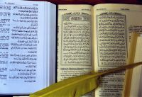 Koran-Feder